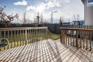 Photo 23: 63 Saddlecrest Terrace NE in Calgary: Saddle Ridge Detached for sale : MLS®# A1047869