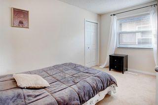 Photo 20: 63 Saddlecrest Terrace NE in Calgary: Saddle Ridge Detached for sale : MLS®# A1047869