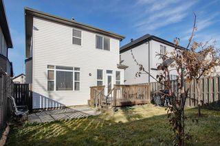 Photo 22: 63 Saddlecrest Terrace NE in Calgary: Saddle Ridge Detached for sale : MLS®# A1047869