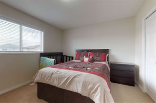Photo 18: 3760 12 Street in Edmonton: Zone 30 House for sale : MLS®# E4169652