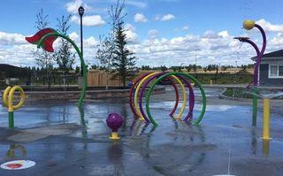 Photo 33: 3097 CARPENTER Landing in Edmonton: Zone 55 House for sale : MLS®# E4183774