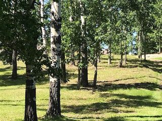 Photo 3: Winchell Lake Estates: Rural Mountain View County Land for sale : MLS®# C4296150