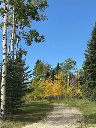 Photo 9: Winchell Lake Estates: Rural Mountain View County Land for sale : MLS®# C4296150