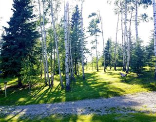 Photo 5: Winchell Lake Estates: Rural Mountain View County Land for sale : MLS®# C4296150