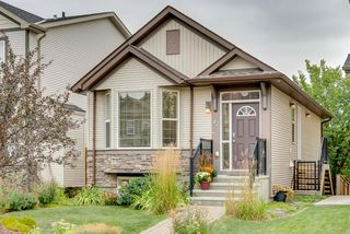 Main Photo: 42 SILVERADO SADDLE Heights SW in Calgary: Silverado Detached for sale : MLS®# A1033776