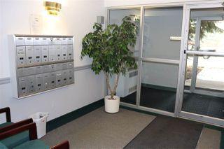 Photo 17: 18 9926 80 Avenue in Edmonton: Zone 17 Condo for sale : MLS®# E4167641