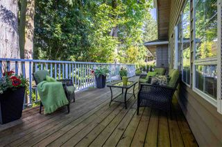"""Photo 29: 42 21848 50 Avenue in Langley: Murrayville Townhouse for sale in """"Cedar Crest"""" : MLS®# R2459559"""