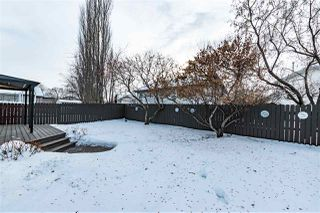 Photo 32: 4 CARTWRIGHT Way: Sherwood Park House for sale : MLS®# E4186363