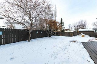 Photo 33: 4 CARTWRIGHT Way: Sherwood Park House for sale : MLS®# E4186363