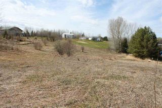 Photo 3: 51 52318 RGE RD 25: Rural Parkland County Rural Land/Vacant Lot for sale : MLS®# E4196603