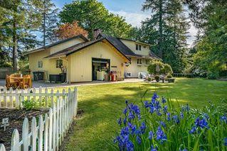 Photo 3: 17095 23 Avenue in Surrey: Pacific Douglas House for sale (South Surrey White Rock)  : MLS®# R2510627