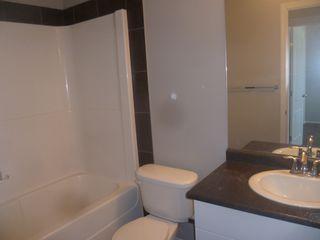 Photo 21: 17013 120 Street in Edmonton: House Duplex for rent