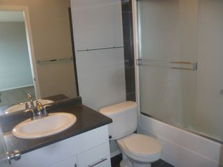 Photo 17: 17013 120 Street in Edmonton: House Duplex for rent