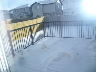 Photo 24: 17013 120 Street in Edmonton: House Duplex for rent
