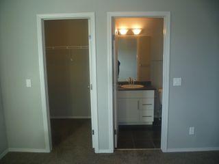 Photo 16: 17013 120 Street in Edmonton: House Duplex for rent