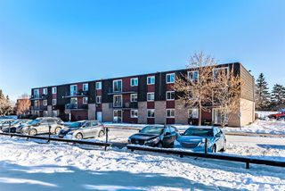 Photo 23: 15D 80 Galbraith Drive SW in Calgary: Glamorgan Apartment for sale : MLS®# A1058973