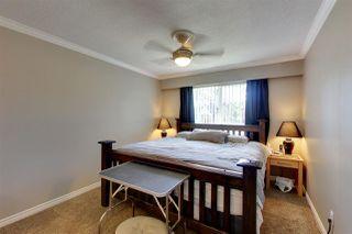 Photo 14: 20481 116TH Avenue in Maple Ridge: Southwest Maple Ridge House for sale : MLS®# R2400812