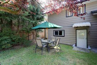 Photo 7: 20481 116TH Avenue in Maple Ridge: Southwest Maple Ridge House for sale : MLS®# R2400812
