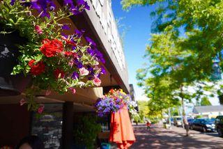 Photo 19: 303 15233 PACIFIC Avenue: White Rock Condo for sale (South Surrey White Rock)  : MLS®# R2460709