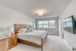 Photo 26: 269 AUBURN SHORES Way SE in Calgary: Auburn Bay Detached for sale : MLS®# A1015161