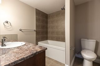 Photo 35: 5523 CONESTOGA Street in Edmonton: Zone 27 House for sale : MLS®# E4215429
