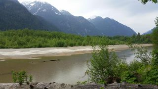 Photo 9: DL 992 MAGEE Road in Squamish: Upper Squamish Land for sale : MLS®# R2528687