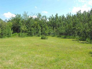 Photo 30: 100 56514 RR 60: Rural St. Paul County House for sale : MLS®# E4171885