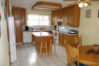 Photo 21: 14711 117A Street in Edmonton: Zone 27 House for sale : MLS®# E4173721