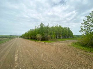 Photo 33: 15166 BUICK CREEK Road in Fort St. John: Fort St. John - Rural W 100th Agri-Business for sale (Fort St. John (Zone 60))  : MLS®# C8030416