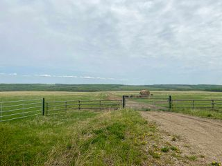Photo 25: 15166 BUICK CREEK Road in Fort St. John: Fort St. John - Rural W 100th Agri-Business for sale (Fort St. John (Zone 60))  : MLS®# C8030416