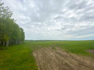 Photo 34: 15166 BUICK CREEK Road in Fort St. John: Fort St. John - Rural W 100th Agri-Business for sale (Fort St. John (Zone 60))  : MLS®# C8030416