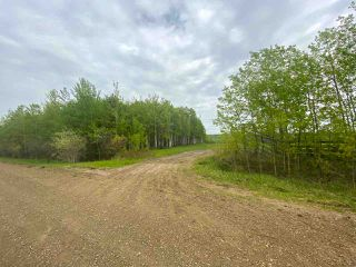 Photo 32: 15166 BUICK CREEK Road in Fort St. John: Fort St. John - Rural W 100th Agri-Business for sale (Fort St. John (Zone 60))  : MLS®# C8030416