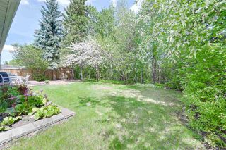 Photo 43: 194 GARIEPY Crescent in Edmonton: Zone 20 House for sale : MLS®# E4199898