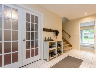 Photo 32: 22324 126 Avenue in Maple Ridge: West Central House for sale : MLS®# R2464119