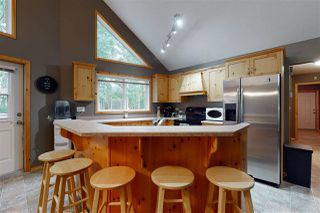 Photo 29: 808 MARINE Drive: Rural Wetaskiwin County House for sale : MLS®# E4202962