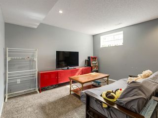 Photo 31: 17 ROYAL ELM Way NW in Calgary: Royal Oak Detached for sale : MLS®# A1034855