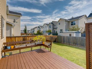 Photo 42: 17 ROYAL ELM Way NW in Calgary: Royal Oak Detached for sale : MLS®# A1034855