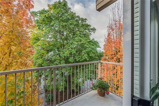 Photo 11: 402 1055 Hillside Ave in : Vi Hillside Condo for sale (Victoria)  : MLS®# 858795