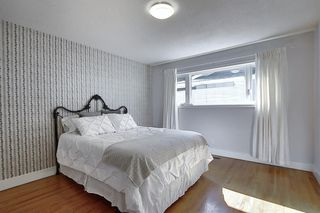Photo 16: 736 WILLACY Drive SE in Calgary: Willow Park Detached for sale : MLS®# A1057135
