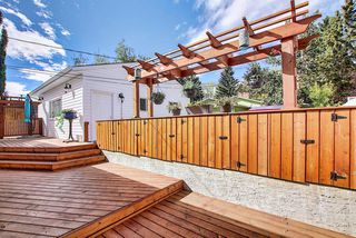 Photo 33: 736 WILLACY Drive SE in Calgary: Willow Park Detached for sale : MLS®# A1057135