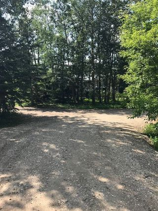 Photo 12: 57220 RR 231: Rural Sturgeon County Rural Land/Vacant Lot for sale : MLS®# E4165186