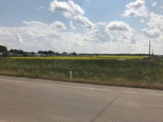 Photo 6: 57220 RR 231: Rural Sturgeon County Rural Land/Vacant Lot for sale : MLS®# E4165186