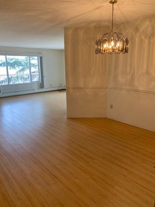 Photo 7: 311 10945 21 Avenue in Edmonton: Zone 16 Condo for sale : MLS®# E4173061