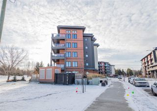 Photo 32: 303 5 ST LOUIS Street: St. Albert Condo for sale : MLS®# E4179367