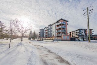 Photo 33: 303 5 ST LOUIS Street: St. Albert Condo for sale : MLS®# E4179367