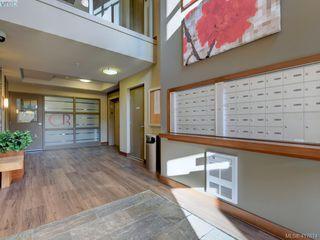 Photo 19: 505 828 Rupert Terrace in VICTORIA: Vi Downtown Condo Apartment for sale (Victoria)  : MLS®# 417674