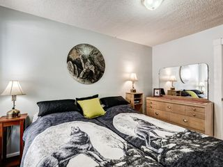 Photo 14: 2227 14 Street SW in Calgary: Bankview Detached for sale : MLS®# A1034801