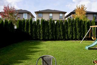 """Photo 35: 13625 230A Street in Maple Ridge: Silver Valley House for sale in """"Campton Green"""" : MLS®# R2509840"""