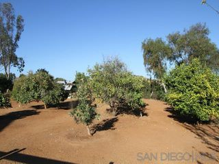 Photo 23: RANCHO SANTA FE House for sale : 5 bedrooms : 16544 Franzen Farm Rd in San Diego