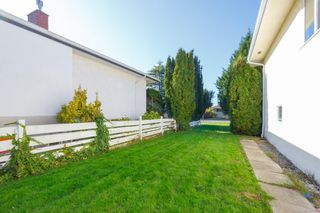 Photo 38: 3213 Carman St in : SE Camosun House for sale (Saanich East)  : MLS®# 859445